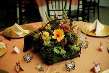 mom's wedding / by Jaime Barela