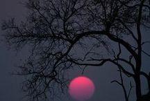 Noche / Hermoso