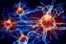 Neurotechnologies / U.S. President Barack Obama's grand challenge in science and technology, the Brain Research through Advancing Innovative Neurotechnologies (BRAIN) Initiative, launched two years ago, is already fueling the creation of powerful new brain research tools.
