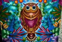 Owl#secretgarden