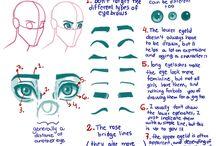 R E F : Face Anatomy