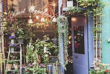 I Want A Flower Shop