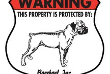 Boerboel Signs and Pictures / Warning and Caution Boerboel Signs. https://www.signswithanattitude.com/boerboel-signs.html