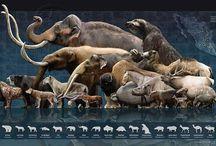 prehistóricos