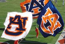 Auburn / War Eagle is a motto or battle cry of supporters of Auburn University sports teams—especially the Auburn Tigers football team—and, for all intents and purposes, for Auburn University in general. It is also the title of the university's fight song. War Eagle is also a common term of endearment, greeting, or salutation among the Auburn 'family'. / by Cathryn Davis
