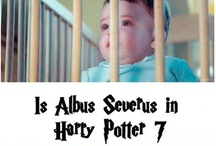 Harry potter facts .