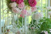 Wreaths / by Stina