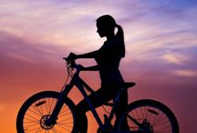 Let's Go ... Mountainbike