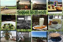 Imágenes en movimiento Sequer lo Blanch / Una visión de lo que hacemos en Sequer lo Blanch