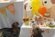 Dog Days of Summer / Dog theme party / by Party Pinching