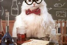 science nerd / by Lucy Hull