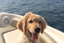 out in the boat with Mom... :) ...