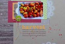 Harvest - Scrapbook Stories November 2012