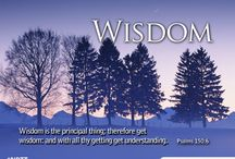 Get Wisdom / by Nothing But The Truth