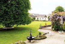 Our Gardens / Here at the Dunadry we're extremely proud of our gardens and with good reason; they're home to the 'Peace Tree' & the perfect backdrop to some spectacular looking wedding photo's