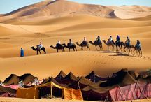 Morocco / Elite Tour Club offers Luxury Tours to Morocco / by Elite Tour Club