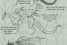 Estudo de dragões