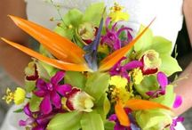 Tropical bouquets and centerpieces / Bridal and bridesmaid's bouquets and centerpieces.