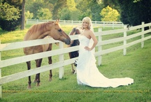 Bridal portraits / by Mary Potter