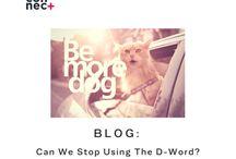 Connect Plus Blogs