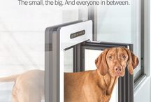 petWALK - doors for pets / Completely airtight, highly insulated and burglar proof, the Austrian innovation puts an end to drafts and heat loss by pet entries.   Like an invisible butler petWALK opens automatically only for own animals. Stylish design and high-quality materials make them most beautiful pet doors in the world.