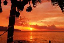 Travel: Tropical