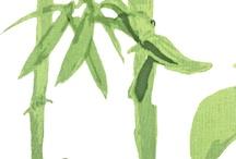 Botanica / Botanical prints and paintings