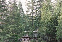 kate - Camp Wedding!