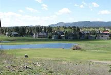 Under Contract! 639 Handicap Avenue, Pagosa Springs, CO 81147 / Listing Broker - Shelley Low Nice Building lot with views of the golf course and the pond. With Tap fees paid this lot is close to shopping, restaurants and the golf course clubhouse where they serve meals and beverages. This is not on the golf course side but you can enjoy the views without the people right outside of your doors.