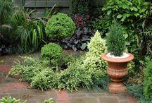 Small Garden Ideas / Inspiration for my teeny, tiny yard...........