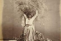 lady harversting grass