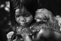 Fotografia Brasileira