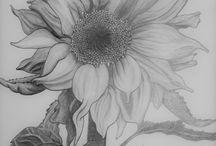 Sunflowers :-)