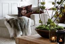 Rustic Luxe / Home Decor Ideas