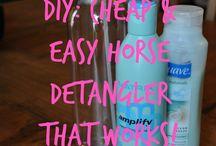 diy horse health