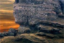 Fotografii cu natură