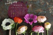 Calendars & Walpapers