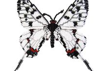 My butterfly beads
