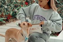 Toulouse dog♡