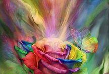 Light/colour art