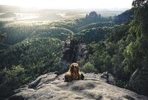 Sometimes you have to take a break, chill, enjoy the view and get inspired by nature! Would you like to hang out there?