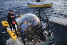 News of the underwater world
