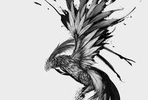 Экскиз феникс