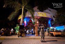 Yaxche / Nos especializamos en servir el arte culinario Maya en un estilo único. Comer en Yaxche será una travesía al mundo Maya donde encontrará sabores de la región en un ambiente único que yuxtapone elementos milenarios y cosmopolitas.