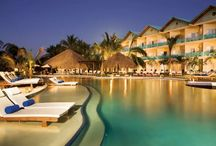 2017 Top Ten - Award Winning All-Inclusive Resorts / These resorts have earned special distinction among their competitors for superior services, amenities, accommodations or other exceptional characteristics.