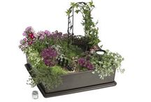 Great Gifts for Fairy Gardeners