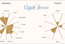 The Sensory Profiles / Cigar aromas and palate perceptions charts. Cigar Sense follows a unique method based on more than 100 parameters to profile each cigar based on multiple blind tests performed by its international panel.
