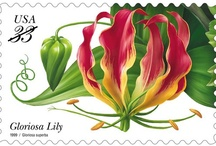Flower stamps / Flowers posted in all their splendour.