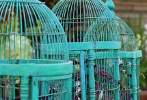 Bird cages I want