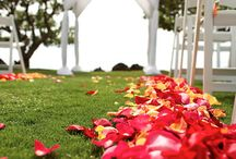 Ceremony Flowers / Bridal Paths, Aisle Flowers & Petals Cones